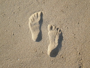 Footprint by Morgan Queen