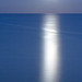 Moonlight Reflected off the Sea by Dominic Alves