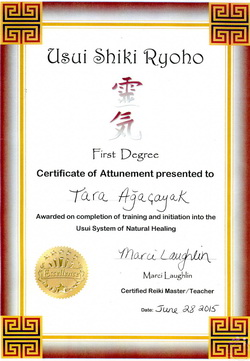 Post image for Usui Shiki Ryoho First Degree Attunement